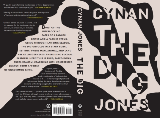 THE DIG U.S. cover